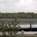 Lyon2_2